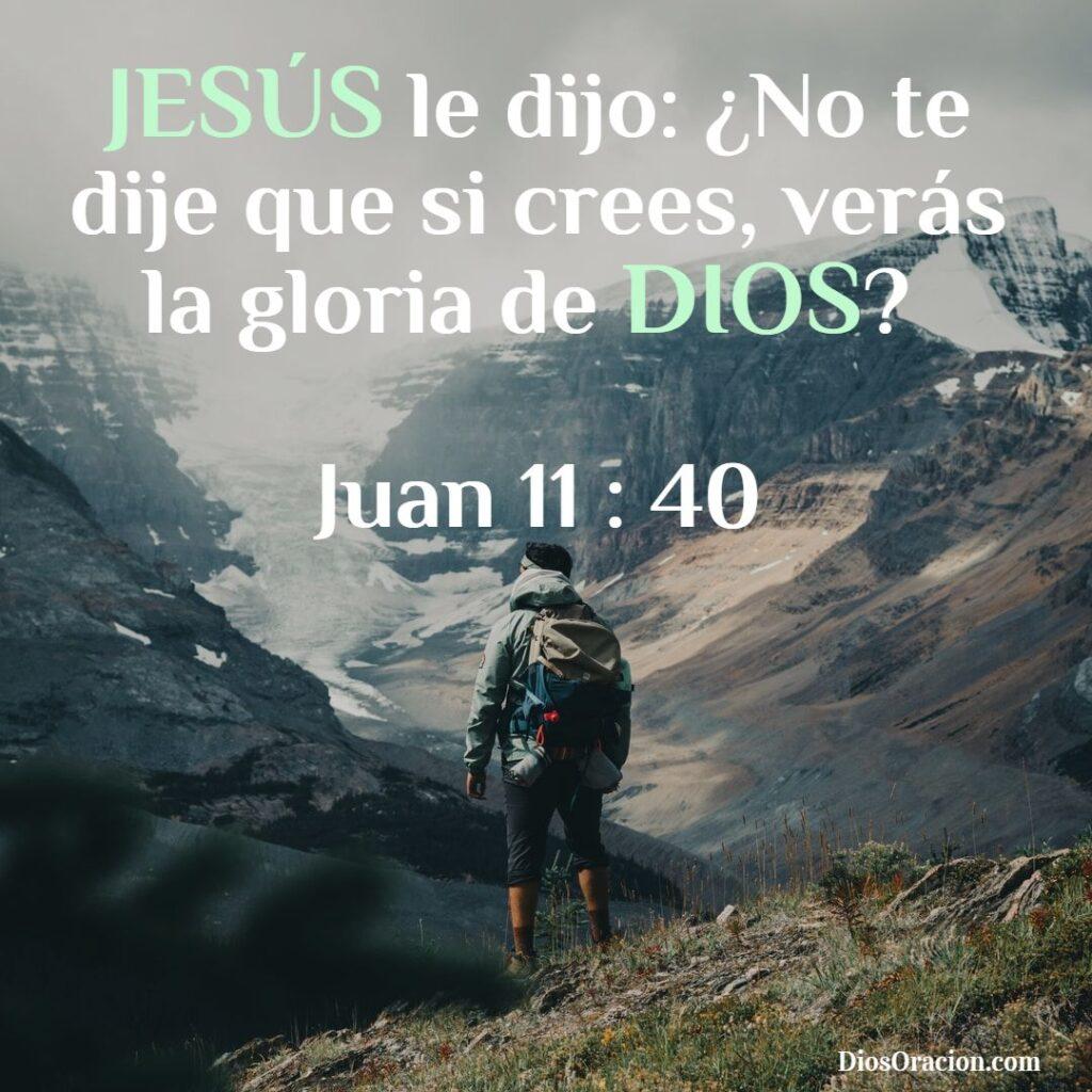 Que Dice la Biblia de Jesús
